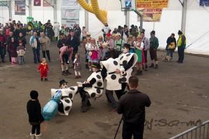 8 karneval-276