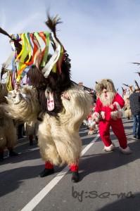 8 karneval-74